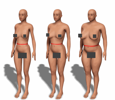 Waist circumference for women with different body types